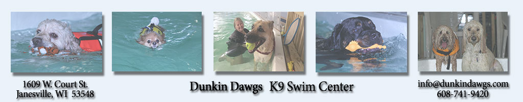 Dunkin Dawgs K9 Swim Center